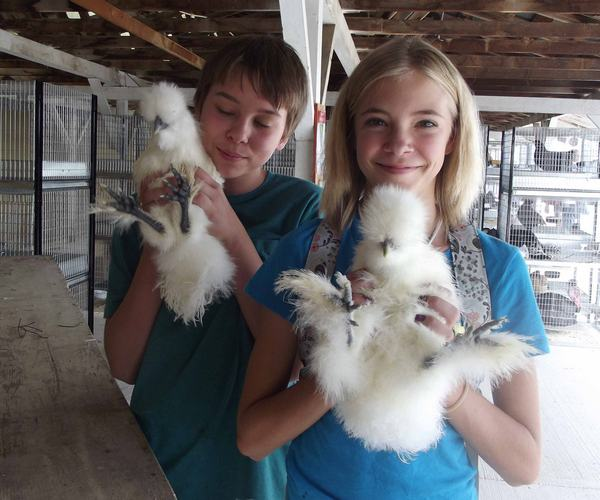 Above, kids show off their chickens at the 2012 Mont-rose County Fair. The theme for the 2014 Montrose County Fair is Vintage. New You. Mirror File Photo.
